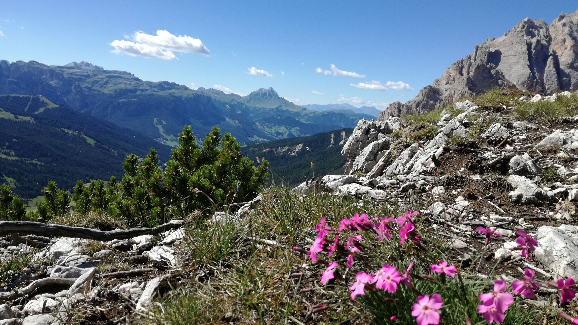 Image: Alta Badia summer and winter